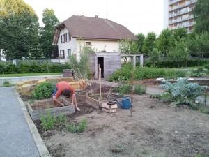 parcelle incroyables comestibles jardin du manoir de novel8